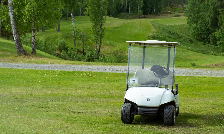 golfbil